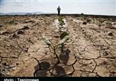 دستان خالی کشاورزان لرستانی در روزهای خشکسالی/ محصولی که در نبود حمایت ضایع میشود