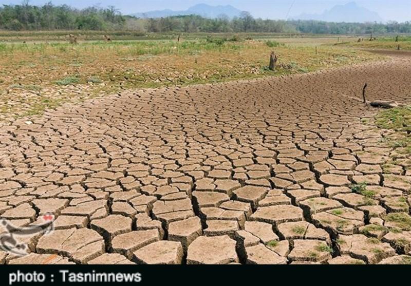 خبری خوش برای کشاورزان؛ وزیر جهاد کشاورزی با پرداخت خسارت خشکسالی موافقت کرد