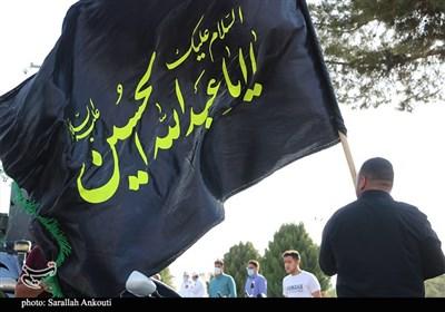 جاماندگان اربعین حسینی در جزایر خلیج فارس پیادهروی کردند