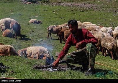 عشایر قره داغ از قشلاقهای دشت مغان به ویژه شهرستان خدآفرین آغاز میشود و در ارتفاعات شهرستانهای اهر، هریس، ورزقان، سراب و کلیبر پایان می یابد.