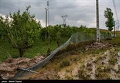 کشاورزان ارومیهای چشمانتظار پرداخت خسارت به مزارع کشاورزی/ بارش باران 775 میلیارد ریال خسارت زد