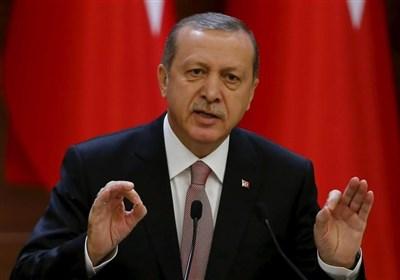 اردوغان: آمریکا از گروههای تروریستی ضدترکیه حمایت لجستیکی میکند/ روابط مصر و ترکیه قوی و تاریخی است