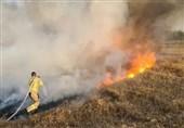 مهار آتشسوزی در جنگلهای نمین/جنگلبان منطقه مصدوم شد