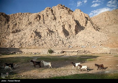 خشک شدن سراب خضرالیاس در کرمانشاه