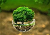 شرایط زیستمحیطی کشور بسیار شکننده است