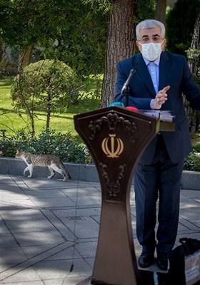 رضا اردکانیان وزیر نیرو در حاشیه جلسه هیئت دولت