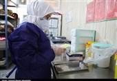 60 درصد تستهای کووید در استان بوشهر مثبت است/ ظرفیت بخشهای کرونا تکمیل شد