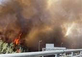 دستگیری 9 نفر از عوامل آتش سوزی مراتع خوزستان/آتش زدن مزارع به منابع خاکی آسیب میرساند