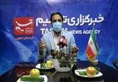 نامزد جبهه انقلاب شورای شهر بیرجند: شوراهای شهر جولانگاه سیاسی بازی نیست