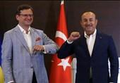 ترکیه و اوکراین به دنبال توسعه روابط نظامی در دریای سیاه