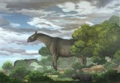 New Fossils Reveal One of Largest Land Mammals Ever Found