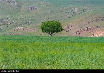 """طبیعة منطقة """"ارسباران"""" شمال غرب إیران"""