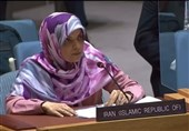 Envoy Rejects UN Human Rights Rapporteur's Report on Iran