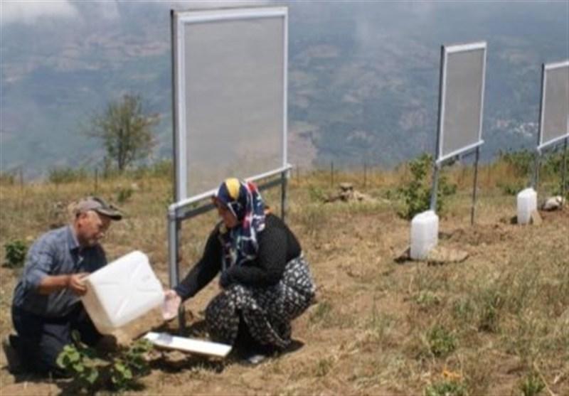 «معجزه آبخیزداری»|تأمین آب شرب از مه فقط با 500 هزار تومان/ افزایش تاب آوری آبخیزنشینان با استحصال آب از رطوبت هوا
