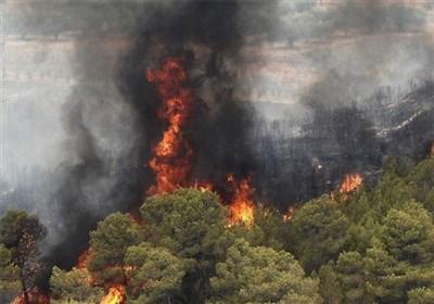 آخرین جزئیات از آتش سوزی جنگلهای گچساران؛ نارک خاموش شد