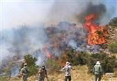 آتشسوزی جنگلهای نارک گچساران همچنان ادامه دارد/ علت آتشسوزی هنوز مشخص نیست