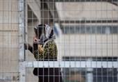 اوضاع بد زنان اسیر فلسطینی در بند رژیم صهیونیستی