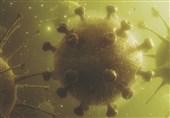 آنتی بادی واکسیناسیون کرونا 3 برابر آنتی بادی مبتلاشدگان است