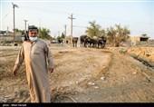 همصدایی بزرگان و شخصیتهای اجتماعی، فرهنگی و ورزشی کشور با مردم خوزستان