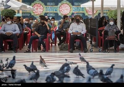 مراسم قرائت دعای روز عرفه در امام زاده صالح (ع)
