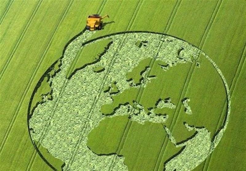 حفاظت از کشاورزان در مقابل نوسانات قیمت و درآمد؛ مروری بر تجارب سایر کشورها