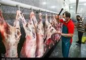 نبود نهادهها دلیل ذبح دامهای مولد است/ هشدار بحران کمبود و گرانی گوشت قرمز در آینده