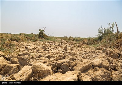 از سه روز گذشته میزان خروجی سد کرخه افزایش یافته که موجب ورود آب به مخازن ورودی تالاب هور العظیم گردید هرچند هنوز بخشهایی از آن در خشکی به سر میبرد