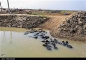 رسیدن آب به دحیماوی و رفیع - خوزستان