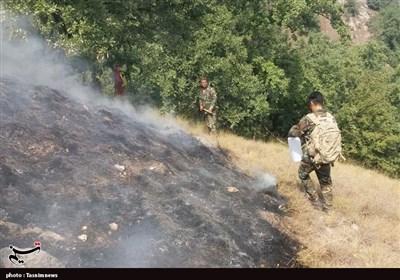 مهار آتشسوزی در جنگلهای استان گلستان/ 20 هکتار جنگل در آتش سوخت+ تصاویر و فیلم