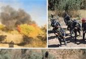 دلایل حملات داعش به غرب عراق