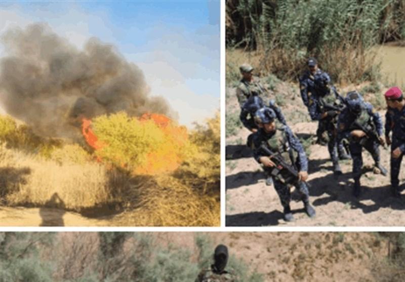 اخبار امنیتی عراق   ضعف اطلاعاتی و افزایش حملات داعش