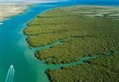 جلوگیری از ورود آب شیرین به دریا از عوامل فاجعه زیست محیطی در خلیج فارس است