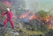 128 هکتار اراضی میانکاله از ابتدای سال در آتش سوخت/هشدار درباره آتشسوزی دوباره