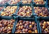فصل خرماپزان به کام نخلداران بوشهری تلخ است