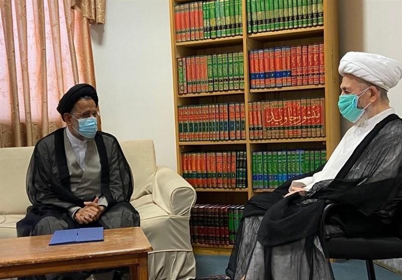 وزیر اطلاعات با مراجع تقلید دیدار کرد+ تصاویر