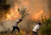 حواشی 107 آتش سوزی در جنگلهای ترکیه- بخش اول