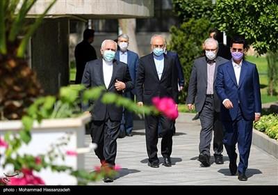 آذری جهرمی، سعید نمکی، علی اکبر صالحی و محمدجواد ظریف در حاشیه آخرین نشست هیئت دولت دوازدهم