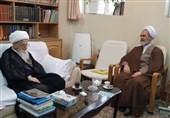 مدیر حوزههای علمیه با آیتالله صافی گلپایگانی دیدار کرد