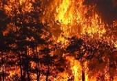 تعداد جانباختگان آتش سوزی گسترده در ترکیه به 8 تن رسید
