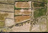 میزگرد|تغییرات اقلیمی و خشکسالی در کمین غرب ایران/تناقض سیاستهای آبی کشور به ترویج خشکسالی میانجامد