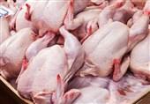 قاچاق مرغ از شهرستانها به تهران