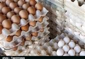 تخممرغ در آذربایجان غربی گران شد؛ مردم قدرت خرید ندارند