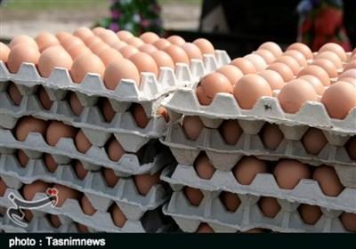 سنگینی گرانی روی شانههای تخم مرغ / قیمتهای نجومی در سبد غذایی مردم مانور میدهند
