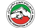 سالار، رئیس کمیته انضباطی فدراسیون ووشو شد/ وثوق احمدی؛ رئیس کمیته استیناف