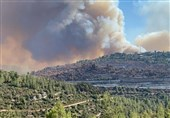 آتشسوزی پارک جنگلی کرخه مهار شد/ رفع خطر از سایت نگهداری گوزن زرد ایرانی