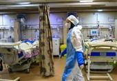 شناسایی 12 بیمار مبتلا به قارچ سیاه در استان کردستان/ یکی از بیماران بدحال به تهران اعزام شد
