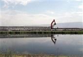 برگزاری نشست مشترک ایران و ترکیه در خصوص حل مسائل بخش آب دو کشور