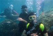 گفتوگوی تسنیم با بنیانگذار قدیمیترین مدرسه غواصی ایران/ فیلم اختصاصی از دنیای زیر آب عمان