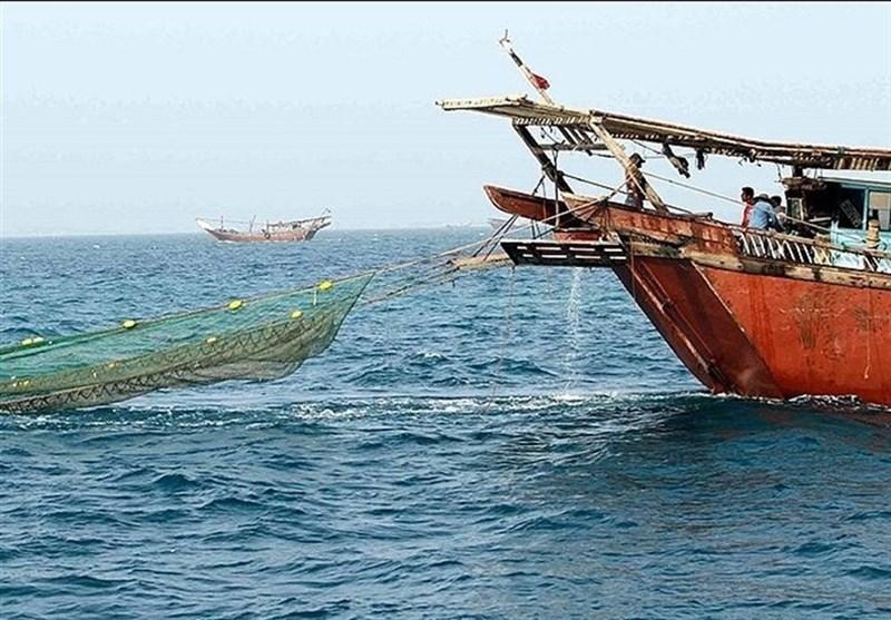 صیادان بوشهری بیش از 1700 تن میگو در خلیجفارس صید کردند