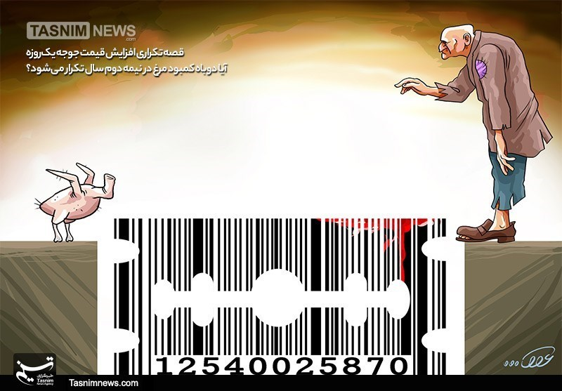 کاریکاتور/ قصه تکراری افزایش قیمت جوجه یکروزه / آیا دوباه کمبود مرغ در نیمه دوم سال تکرار میشود؟